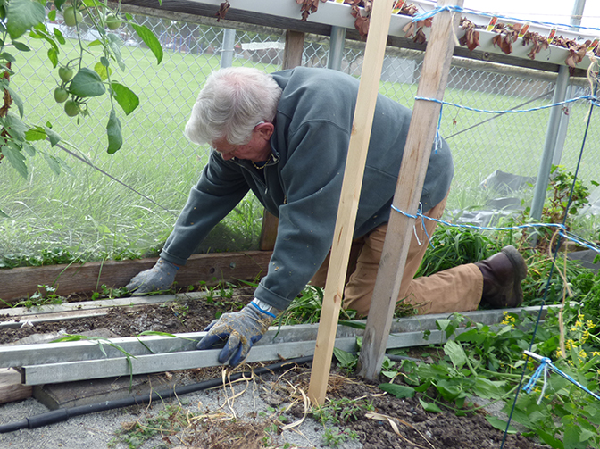 Cleaning Hoop House